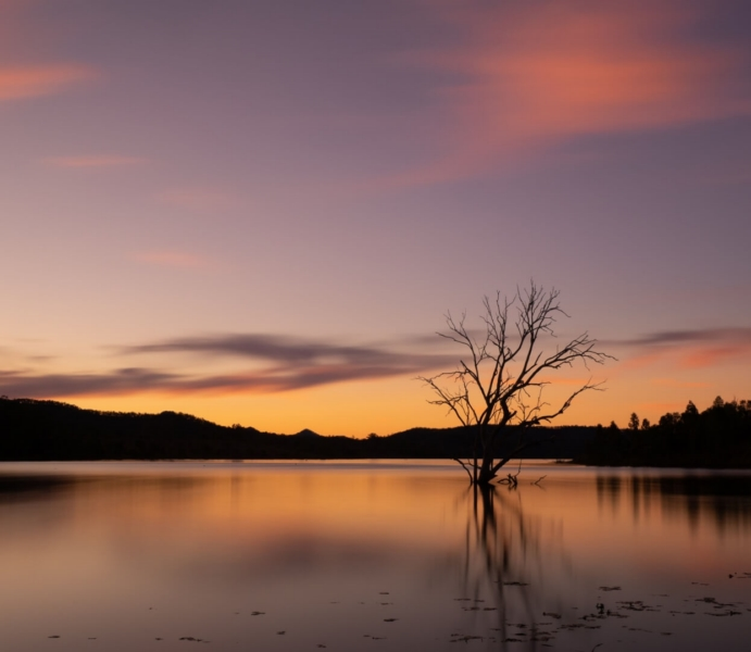 Honour For Sunset At Wyaralong By Dorothy Harkins