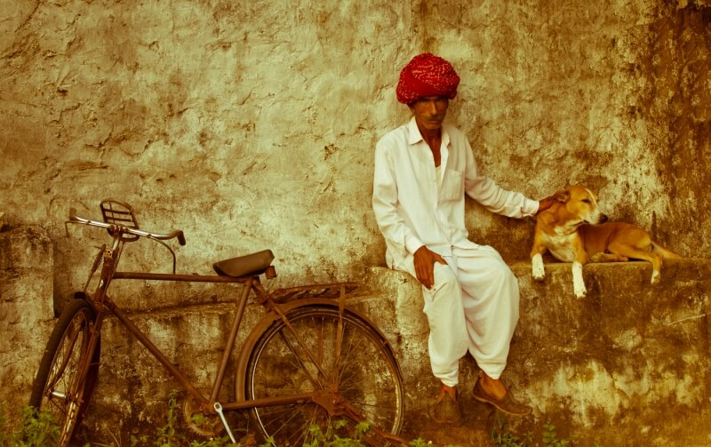 Honour For Man With Bike And Dog By Nadia Filiaggi