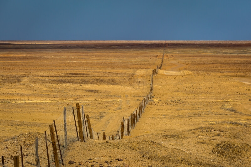 Merit For Long Dingo Fence By Theo Haaima
