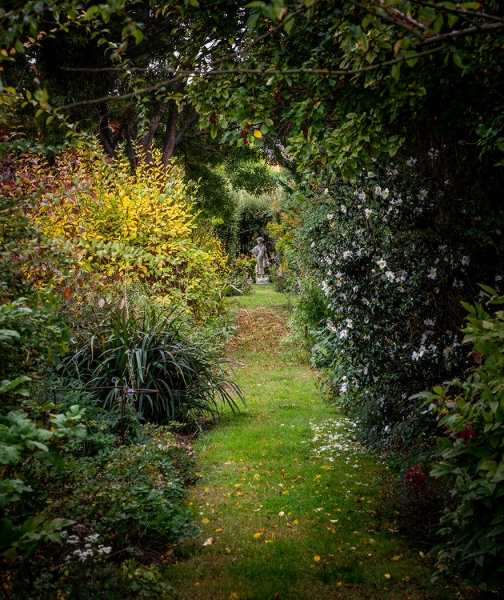 Merit For Up The Garden Path By Priscilla Gibbs