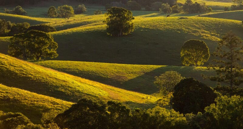 Merit For Backlit Ridges 2 By John North