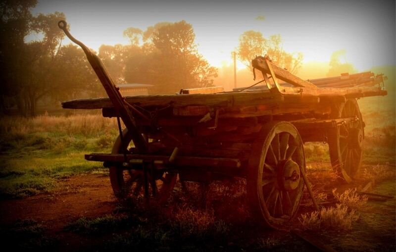 Honour For Old Cart At Peterborough SA By Caroline Hall